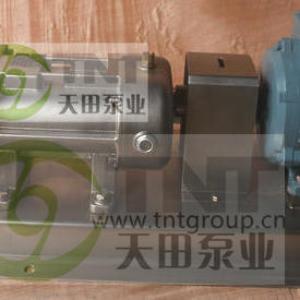 卫生级双螺旋果酱泵 高浓度带颗粒双螺旋泵 奶油巧克力输送双螺旋平行泵