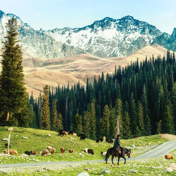 【野趣·房车露营季】 | 有一种风景叫车窗外,有一种旅行叫去新疆