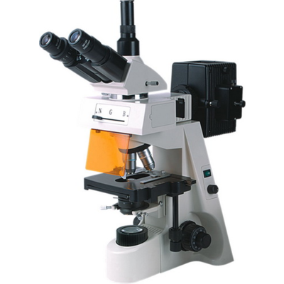 荧光显微镜BM-19AY