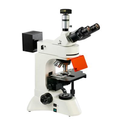 UIS荧光显微镜BM-22BYD(电脑、落射)