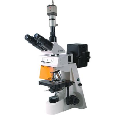 电脑荧光显微镜BM-19AYC