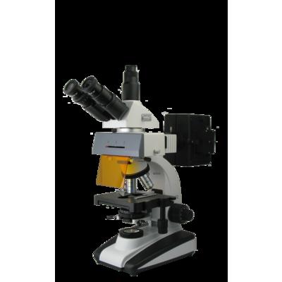 UIS荧光显微镜BM-20AY(三目、落射)