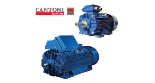 CANTONI电机,Cantoni马达