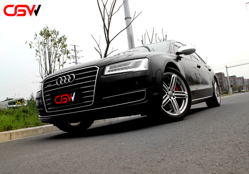 CGW-Audi A8 mid-end valve exhaust