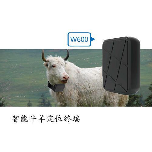 動物GPS定位系列(W600)