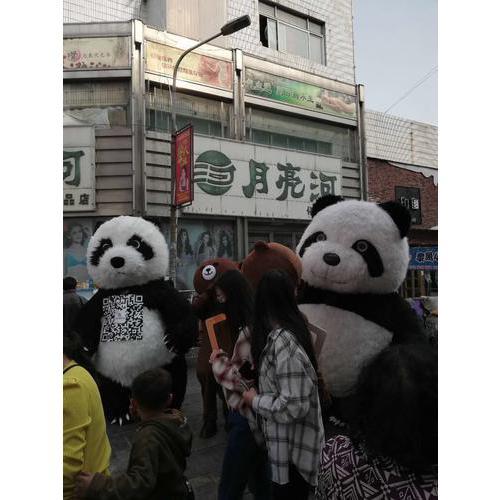 国宝大熊猫服装