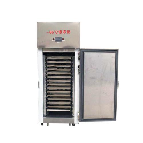 新款-65低温速冻箱