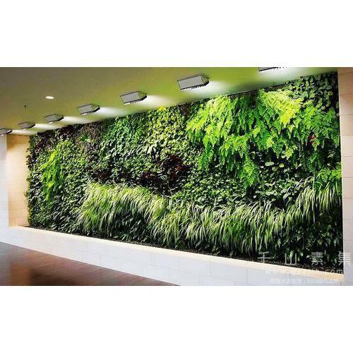 室内艺术植物墙有哪些表现形式