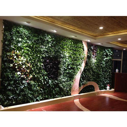 不适合装置植物墙的环境有哪些