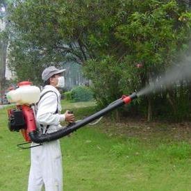 灭蚊虫服务