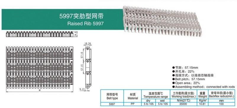5997突肋型网带.jpg