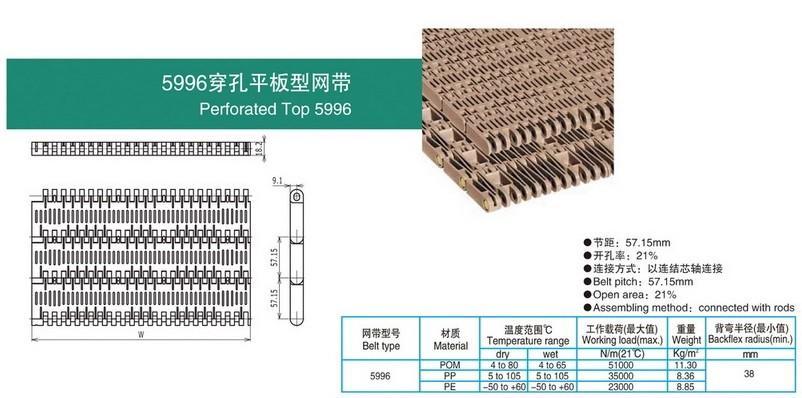 5996穿孔平板型网带.jpg