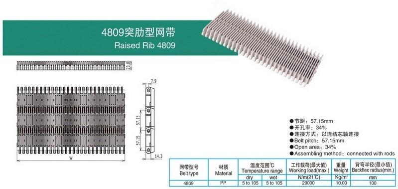 4809突肋型网带.jpg