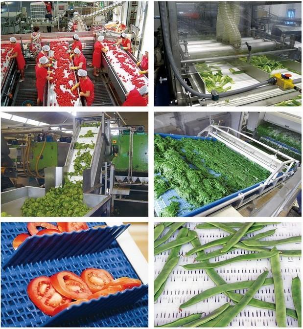 水果和蔬菜行业.jpg