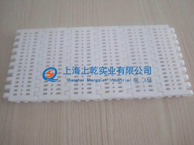 800开孔塑料网带 (13).jpg