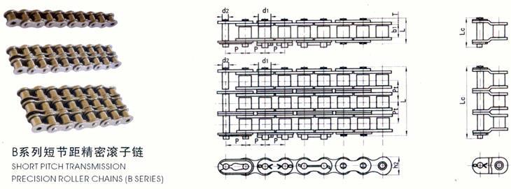 B系列短节距精密滚子链.jpg