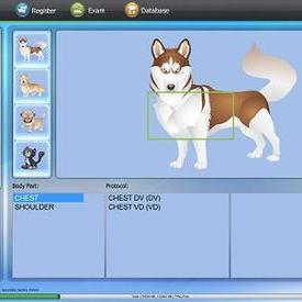 動物DR數字X線成像系統
