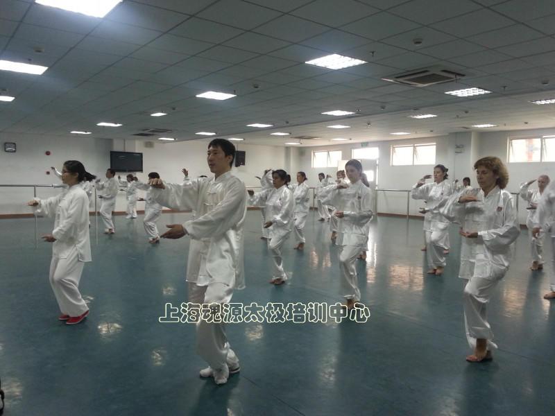 欧洲旅游团太极拳学习活动
