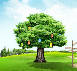 合同能源管理业务