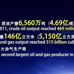 中国石化公司-上海迈旭影视广告