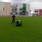 学校绿化养护工程