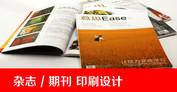 杂志 / 期刊