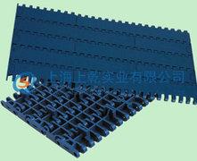 1000平板限位塑料网带网带