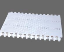 800锥顶塑料网带