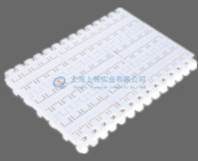 800穿孔塑料网带