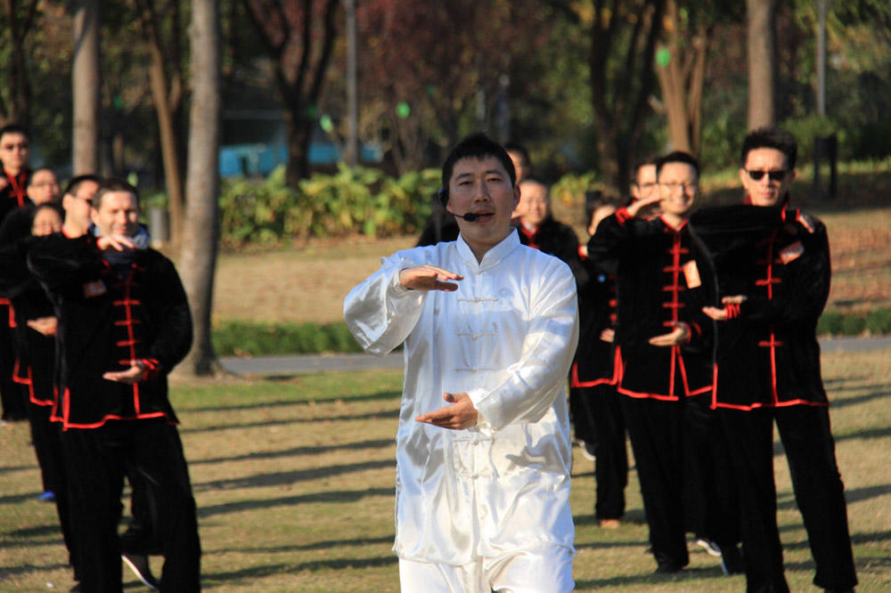 Tai Chi Kung Fu Activity