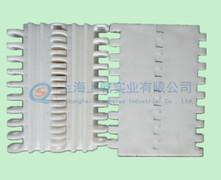 MPB平板塑料网带