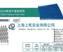 FLS254转弯平格型塑料网带(7100转弯塑料网带)