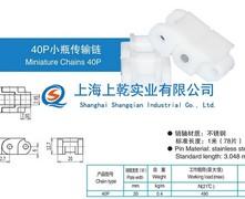 40P小瓶传输链