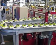 轴承行业专用Flexlink柔性线输送系统