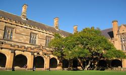 解析新西兰部分大学的专业
