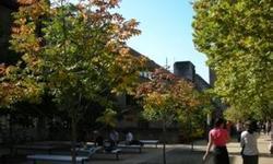 澳大利亚留学:麦考瑞大学媒体与文化研究学士专业课程详情