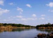 闵行滨江湿地公园园林万博最新版本下载