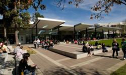 申请新西兰留学签证的相关要求