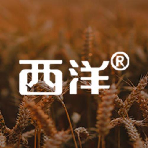 复合肥行业——西洋肥业:数字赋能:让「云」与「化肥」聚变反应