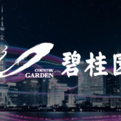 房地产行业——碧桂园:数字化驱动业务创新