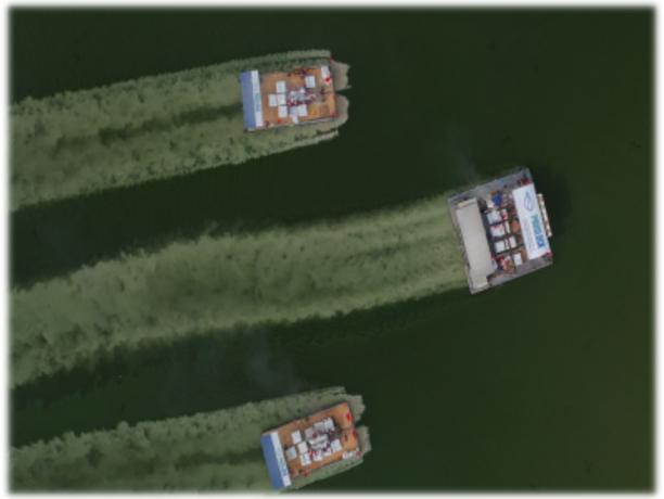 高原湖泊-云南星云湖