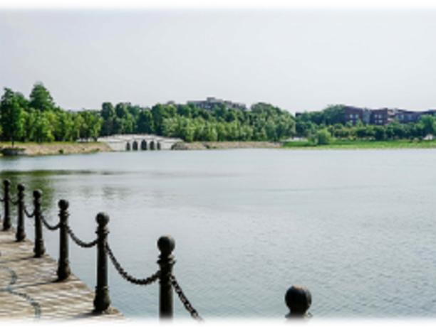 水质提升-武汉东湖天鹅湖景区