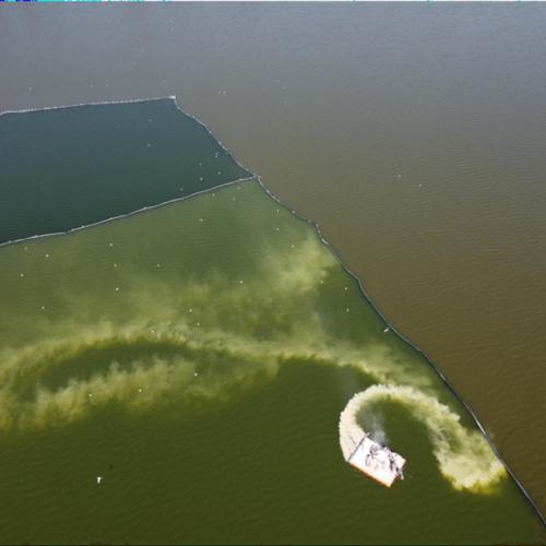 PHOSLOCK   滇池水体降磷示范推广项目开始实施-2021.01.01