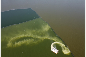 滇池水体降磷示范推广项目开始实施---------2021年01月01日