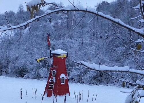 雪景下的风车