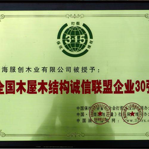 联盟企业30强-荣誉证书