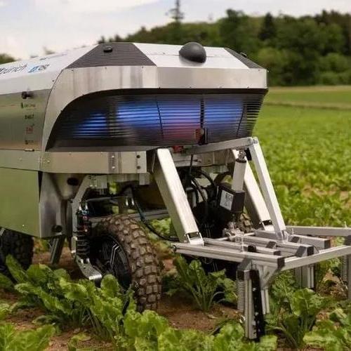 item案例|除草机器人——告别除草剂的未来农业