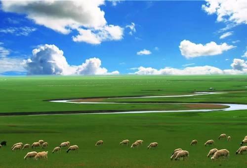【野趣·房车露营季】 | 纯净草原上的蒙古包生活,体验边境的异国风情
