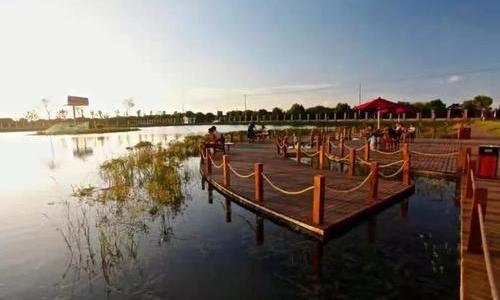 燃情8月,超低价的崇明房车住宿体验来了-明珠湖天鹅苑!