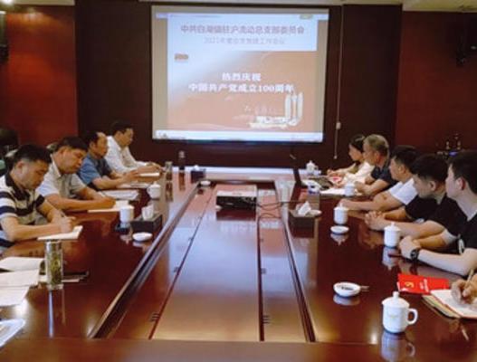 白湖镇驻沪流动党总支学习习近平总书记在庆祝中国共产党成立100周年大会上的重要讲话精神